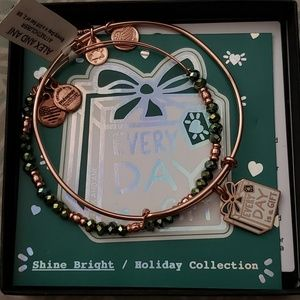 alex and ani, every day is a gift, set of 2